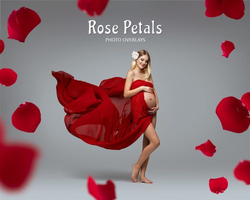 Rose Petal Overlays
