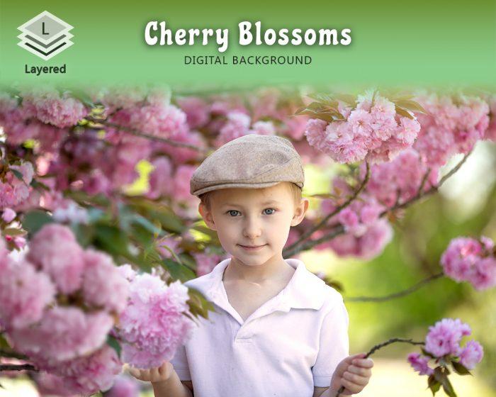 Layered Cherry Blossom Backdrop