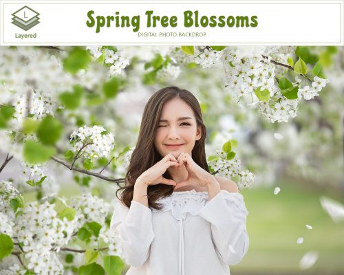 Spring Tree Blossom Backdrop