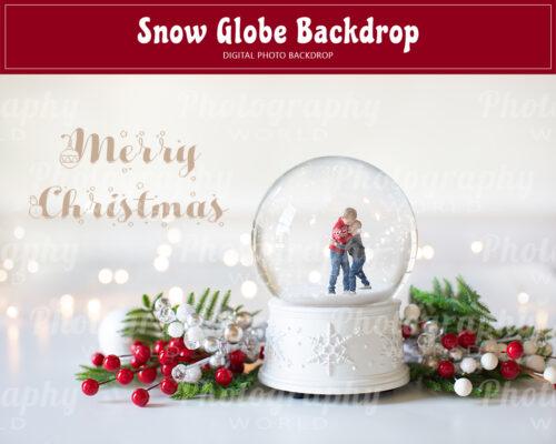 Christmas Snow Globe Backdrop